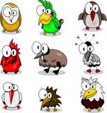 Inzameling van beeldverhaalvogels Royalty-vrije Stock Afbeelding