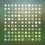 Inzameling van bloemen voor ontwerp Stock Afbeelding
