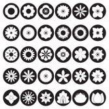 Inzameling van Bloempictogrammen Stock Afbeeldingen