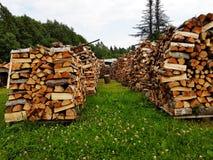 Inzameling van brand-hout in stapels Royalty-vrije Stock Foto's