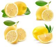 Inzameling van citroenen op een witte achtergrond wordt geïsoleerd die royalty-vrije stock afbeelding