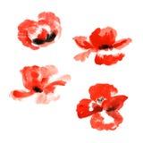 Inzameling van de bloemen van de waterverfpapaver stock illustratie