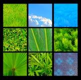 Inzameling van de groene en blauwe achtergrond van de aardtextuur Royalty-vrije Stock Foto