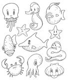 Inzameling van diverse mariene dierlijke krabbels Royalty-vrije Stock Foto