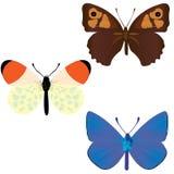 Inzameling van drie gemeenschappelijke vlinders stock illustratie