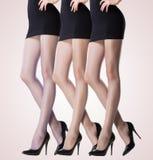 Inzameling van dunne kousen op sexy vrouwenbenen stock afbeeldingen
