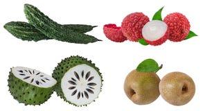 Inzameling van exotische die vruchten op een wit wordt geïsoleerd stock fotografie