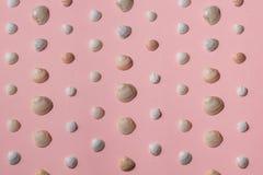 Inzameling van exotische die zeeschelpen over roze achtergrond wordt geïsoleerd stock illustratie