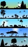 Inzameling van fauna en florabanners Stock Afbeelding