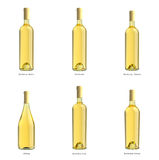Inzameling van flessen witte wijn Stock Afbeelding