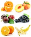 Inzameling van fruit die op wit wordt geïsoleerdj royalty-vrije stock afbeelding
