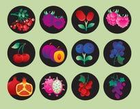 Inzameling van fruitpictogrammen Stock Foto's