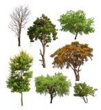 Inzameling van Geïsoleerde bomen op witte backgroud Stock Fotografie