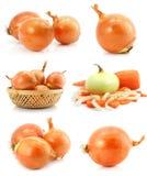 Inzameling van geïsoleerder ui plantaardige vruchten stock afbeelding