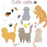 Inzameling van geschetste katten voor ontwerp Royalty-vrije Stock Afbeeldingen