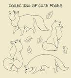 Inzameling van geschetste vossen Stock Afbeeldingen