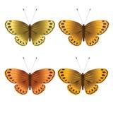 Inzameling van gouden vlinders, ontwerpelementen Stock Afbeelding