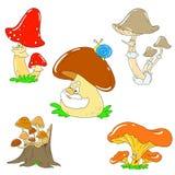 Inzameling van grappige paddestoelen Vectorpaddestoelkarakters Stock Afbeeldingen