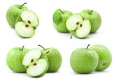 Inzameling van groene appelen Royalty-vrije Stock Foto