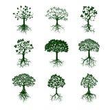 Inzameling van Groene Bomen en Wortels Vector illustratie Stock Foto's