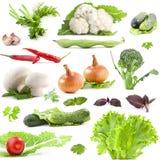Inzameling van groenten Stock Foto's