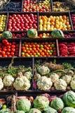 Inzameling van groenten Stock Afbeelding