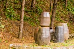 Inzameling van grote aarden potten royalty-vrije stock afbeelding