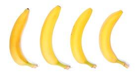 Inzameling van heldere gele die bananen, op een witte achtergrond wordt geïsoleerd Vitaminen Verse Bananen Tropische vruchten stock afbeelding