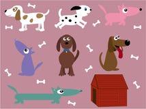 Inzameling van honden Stock Afbeeldingen
