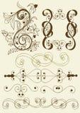 Inzameling van kalligrafische vectorelementen Stock Foto