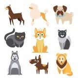 Inzameling van Katten en Honden Verschillende Rassen vlak Royalty-vrije Stock Afbeeldingen