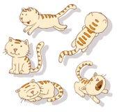 Inzameling van kattenpictogrammen, illustratio Stock Afbeelding