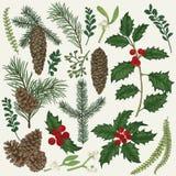 Inzameling van Kerstmisinstallatie vector illustratie