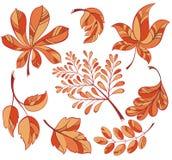 Inzameling van kleurrijke de herfstbladeren Royalty-vrije Stock Afbeeldingen