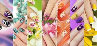 Inzameling van in kleurrijke diverse manicure royalty-vrije stock afbeelding