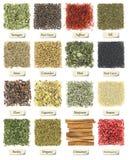 Inzameling van kruiden en kruiden royalty-vrije stock afbeelding