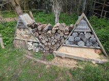 Inzameling van logboeken bij grachtpark, Maidstone, Kent, Medway, het UK het Verenigd Koninkrijk stock fotografie
