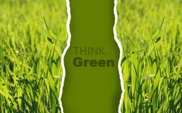 Inzameling van milieuvriendelijke foto's Stock Afbeelding