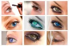 Inzameling van mooie ogen royalty-vrije stock foto's