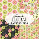 Inzameling van naadloze achtergronden op het onderwerp van bloemengeklets Royalty-vrije Stock Afbeeldingen