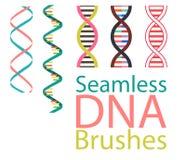 Inzameling van naadloze borstels van abstracte DNA-elementen stock illustratie