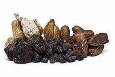 Inzameling van noten. Stock Foto