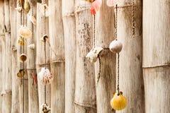 Inzameling van overzeese shells op bamboemuur in wijnoogst Royalty-vrije Stock Foto