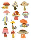 Inzameling van Paddestoelen Stock Afbeelding