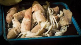 Inzameling van pijlinktvis op de mand op traditionele markt in Indonesië royalty-vrije stock fotografie