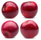 Inzameling van rode die appelen in waterdalingen op een witte rug worden geïsoleerd Royalty-vrije Stock Foto