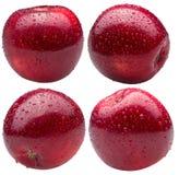 Inzameling van rode die appelen in waterdalingen op een witte rug worden geïsoleerd Stock Afbeelding