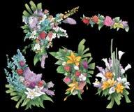 Inzameling van rozen, bloemen en bladeren Royalty-vrije Stock Afbeelding
