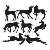 Inzameling van silhouetten van herten in verschillend Royalty-vrije Stock Afbeeldingen