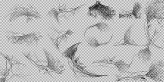 Inzameling van Spinneweb, op witte, transparante achtergrond wordt geïsoleerd die Spiderweb voor Halloween-ontwerp Enge spinneweb stock illustratie